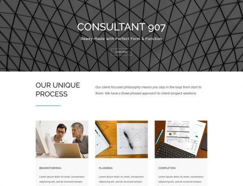 Consultant 907