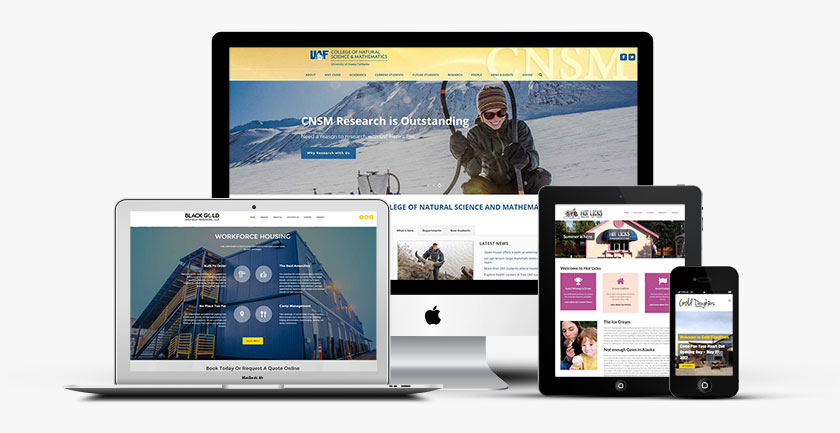 Best Alaska Website Design